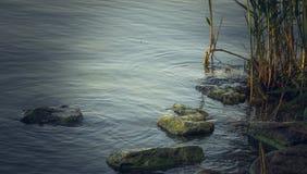 Superfície da água em um rio calmo fotografia de stock