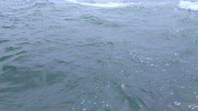Superfície da água no mar tropical filme
