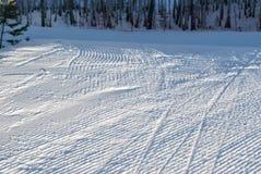 Superfície da inclinação do esqui Fotos de Stock Royalty Free