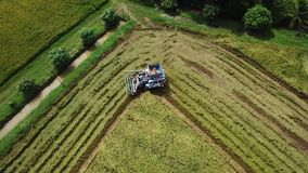 Superfície da metragem que segue na exploração agrícola do arroz na ceifeira filme