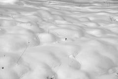Superfície da neve Fotografia de Stock