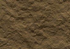 Superfície da rocha Imagem de Stock