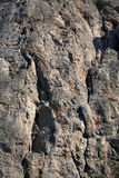 Superfície da rocha Imagens de Stock Royalty Free