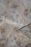 Superfície da rocha Foto de Stock Royalty Free