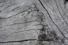 superfície da textura da madeira velha Foto de Stock Royalty Free