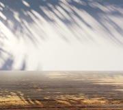 Superfície de madeira com sombras da palma Fotos de Stock