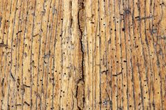 Superfície de madeira danificada velha foto de stock
