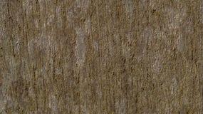 Superfície de madeira do painel Fotos de Stock