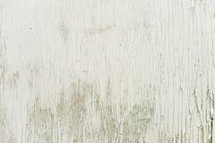Superfície de madeira Textured do fundo pintada com pintura da água-emulsão com quebras pequenas a tempo Fundo rústico imagem de stock royalty free