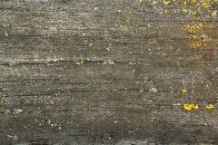 Superfície de madeira velha Imagem de Stock