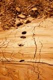 Superfície de Marte Foto de Stock