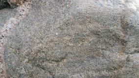 Superfície de um granito errático glacial Fotos de Stock