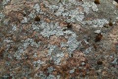 A superfície do close-up de pedra Fundo imagem de stock