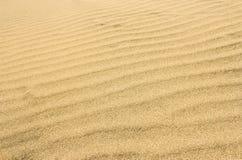 A superfície do deserto arenoso Imagens de Stock