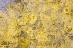 A superfície do emplastro velho Imagem de Stock Royalty Free