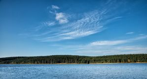 Superfície do lago com floresta e árvores Fotos de Stock