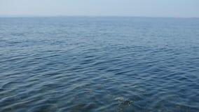 Superfície do mar com ondas delicadas video estoque