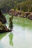 Superfície Miles Canyon Whitehorse Canada do Rio Yukon Imagem de Stock