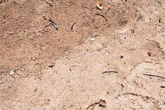 Superfície natural da areia fotografia de stock royalty free