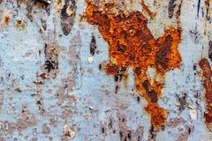 Superfície pintada do ferro com uma grande corrosão oxidada do ponto e do metal imagem de stock
