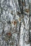 Superfície refletindo de mineral quebrado com inclusões vermelhas Imagens de Stock