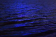 Superfície Rippled da água Fotografia de Stock