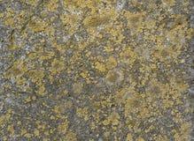 Superfície velha da pedra do fundo Fotografia de Stock Royalty Free