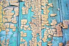 Superfície velha de madeira da porta pintada com pintura gasto do verde e do sepia imagens de stock royalty free