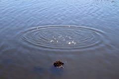 Superf?cie azul da ?gua do lago com ondinhas e artigo do espirro que cai nele ao refletir a luz solar fotos de stock royalty free