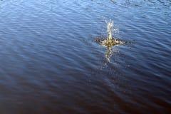 Superf?cie azul da ?gua do lago com ondinhas e artigo do espirro que cai nele ao refletir a luz solar imagem de stock royalty free
