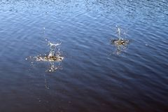 Superf?cie azul da ?gua do lago com ondinhas e artigo do espirro que cai nele ao refletir a luz solar fotografia de stock royalty free