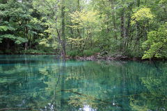 Superfície Mirror-like de uma lagoa Fotos de Stock Royalty Free