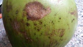 Superfície verde do coco Imagens de Stock Royalty Free