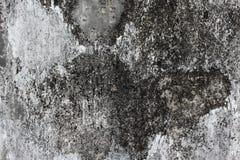 Superficie antica alta chiusa del fondo di lerciume, struttura concreta Fotografie Stock