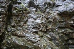 Superficie bagnata della roccia Immagini Stock