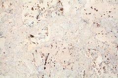 Superficie beige ligera del fondo abigarrado de madera del primer de la teja del corcho, blanco y marrón de la textura fotografía de archivo