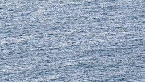 Superficie blu del mare con le onde archivi video
