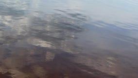 Superficie calma dell'acqua del lago con le ondulazioni leggere archivi video
