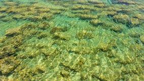 Superficie clara del agua y una parte inferior de mar Imágenes de archivo libres de regalías