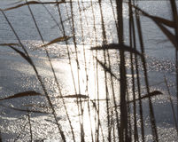 Superficie de congelación del lago Imagenes de archivo