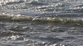 Superficie de ondulación del agua almacen de video
