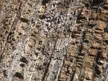Superficie de piedra de la roca Foto de archivo libre de regalías