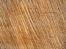 Superficie de una pared de la piedra arenisca como textura Fotografía de archivo libre de regalías