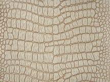 Superficie decorativa che imita la pelle del coccodrillo, dipinta nel colore beige fotografie stock libere da diritti