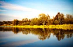 Superficie del agua de la charca con la reflexión Imagen de archivo libre de regalías