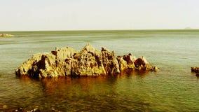 Superficie del agua del océano y filón costero, algas, alga marina, reflujo, grava, isla de la roca almacen de video