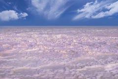 Superficie del lago Sivash del rosa de la sal Imagen de archivo libre de regalías