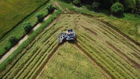 Superficie del metraggio che segue nell'azienda agricola del riso sulla mietitrice stock footage