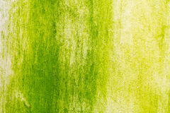 Superficie del musgo verde en la pared imágenes de archivo libres de regalías