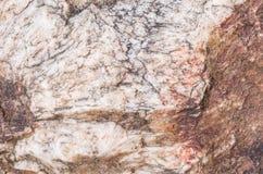 Superficie del primo piano di grande roccia per la decorazione nei precedenti di struttura del giardino Fotografia Stock